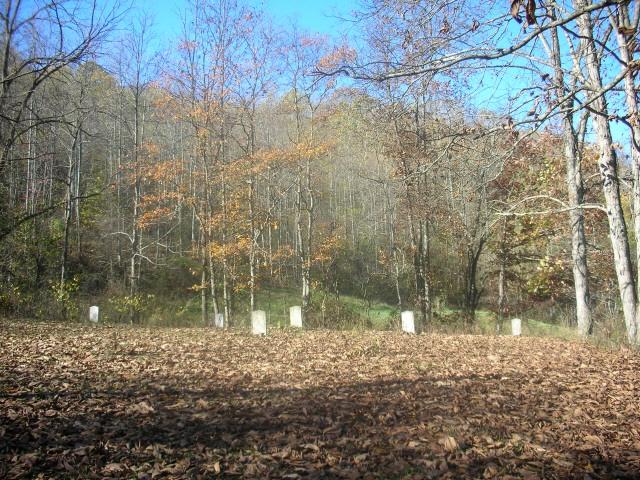 armstead cemetery #1 overview.JPG
