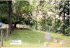 Skidmore Cemetery 2