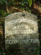 Armstead Harper Headstone